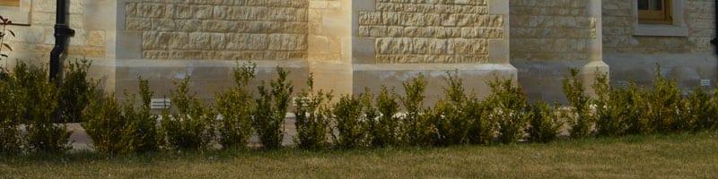 masonry stone plinth course